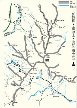 Ashigarakintoki